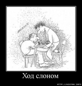 1246108603_hod.jpg
